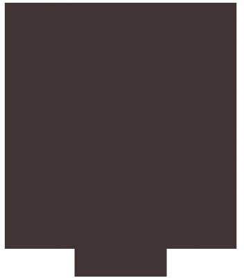 magento webwinkel logo